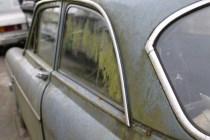 Das grüne Fenster zur Strasse