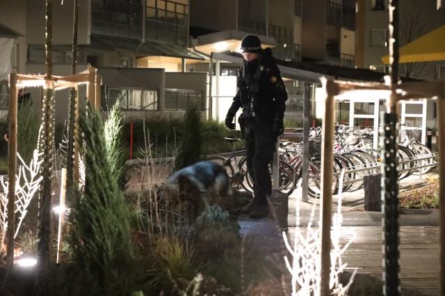 Flera polispatruller tillkallades till platsen i måndagskväll. Foto: Roger Nilsson