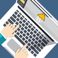 Icon Webentwicklung- WordPressentwicklung bildpunktfabrik.de