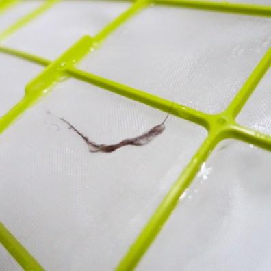 第一層雙層保護濾網可以使用清水清洗,約一個月清洗一次。在鰻魚家貓毛這這一層主要過濾物質。