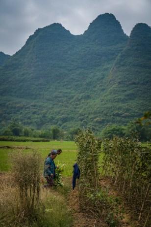 vegatable-farmer-choayang-village-guilin-china