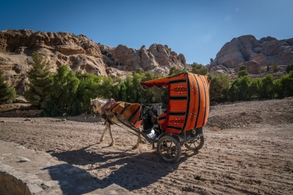 horse-carriage-taxi-petra-jordan