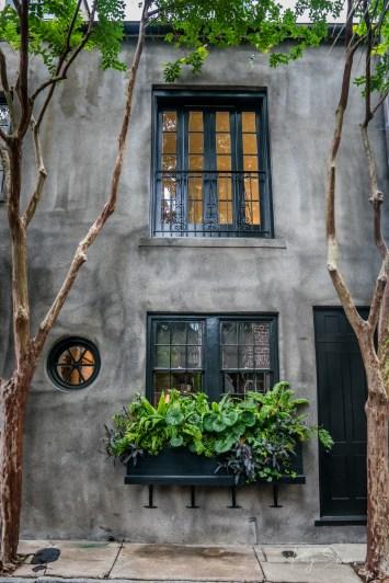 window-box-greenery-charleston