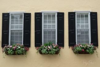 yellow-house-black-shutters-windowbox
