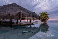 sunrise-pool-palms-baja-palapa-2