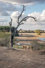 great-walk-africa-day-8-12