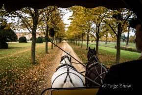 Ride through Hampton Gardens