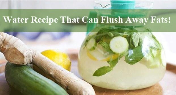 Fat Flush Water