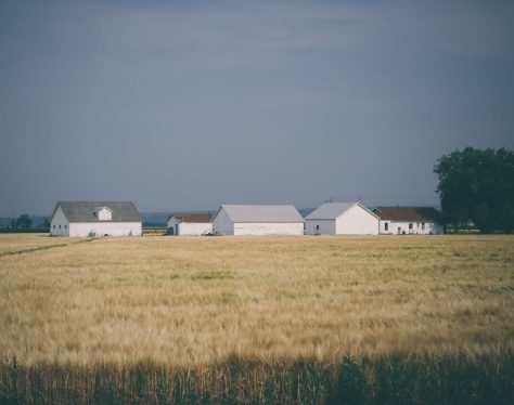 Several buildings in a rural field.