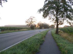 Morgendis-på-tysk-cykelsti