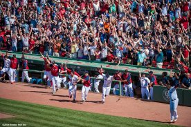 """""""Boston Red Sox players celebrate in the dugout after first baseman Mike Napoli hit a walk-off solo home run to defeat the Minnesota Twins 2-1 in the bottom of the tenth inning at Fenway Park in Boston, Massachusetts Tuesday, June 18, 2014."""""""