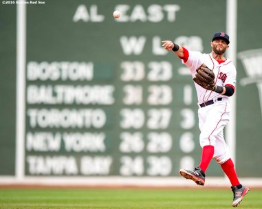 BOSTON, MA - JUNE 5: Dustin Pedroia #15 of the Boston Red Sox throws to first base during the fourth inning of a game against the Toronto Blue Jays on June 5, 2016 at Fenway Park in Boston, Massachusetts. (Photo by Billie Weiss/Boston Red Sox/Getty Images) *** Local Caption *** Dustin Pedroia