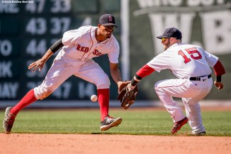 BOSTON, MA - JULY 3: Dustin Pedroia #15 and Xander Bogaerts #2 of the Boston Red Sox reach for a ground ball during the sixth inning of a game against the Los Angeles Angels of Anaheim on July 3, 2016 at Fenway Park in Boston, Massachusetts. (Photo by Billie Weiss/Boston Red Sox/Getty Images) *** Local Caption *** Xander Bogaerts; Dustin Pedroia