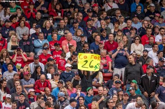 BOSTON, MA - MAY 21: A fan holds up a sign after Jackie Bradley Jr. #25 of the Boston Red Sox hit a single during the sixth inning of a game against the Cleveland Indians on May 21, 2016 at Fenway Park in Boston, Massachusetts, extending his hitting streak to 26 straight games. (Photo by Billie Weiss/Boston Red Sox/Getty Images) *** Local Caption *** Jackie Bradley Jr.