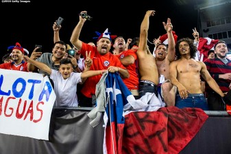 FOXBOROUGH, MASSACHUSETTS - JUNE 10: Fans cheer during a group D match between Chile and Bolivia at Gillette Stadium as part of Copa America Centenario US 2016 on June 10, 2016 in Foxborough, Massachusetts, US. (Photo by Billie Weiss/LatinContent/Getty Images) *** Local Caption ***