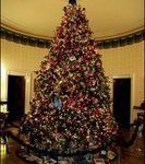 white house christmas tree 744154