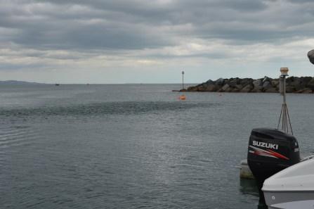 Mackerel fishing for smaller fry