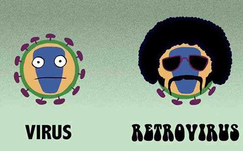 virus & retrovirus