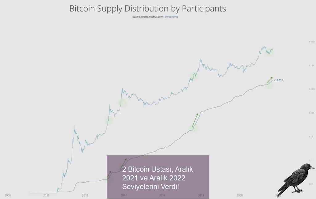 2 bitcoin ustasi aralik 2021 ve aralik 2022 seviyelerini verdi 2 kgklpi1m