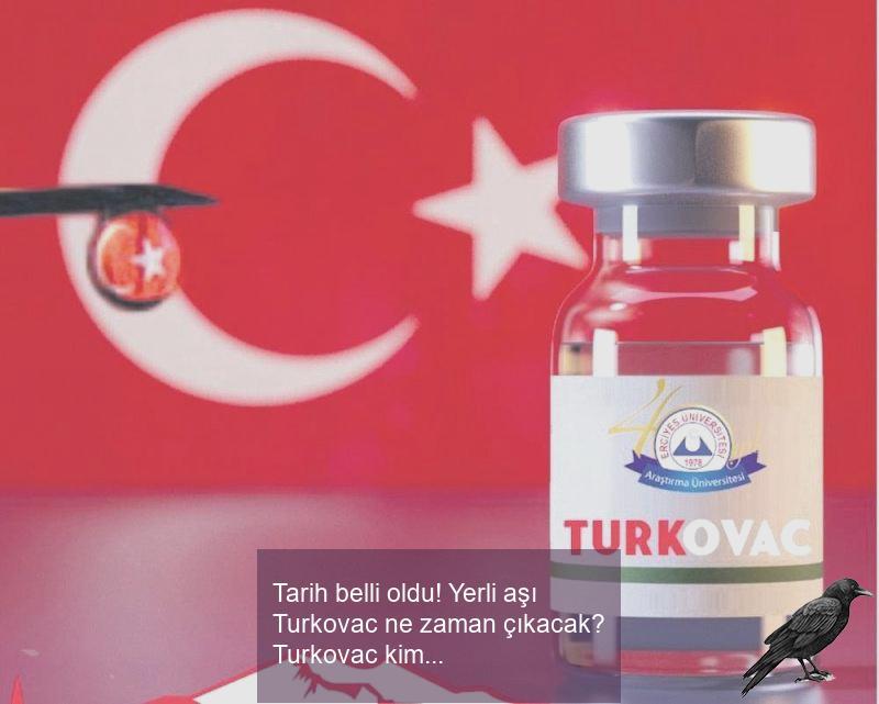 tarih belli oldu yerli asi turkovac ne zaman cikacak turkovac kimlere vurulabilecek 0 pwtn6n1g