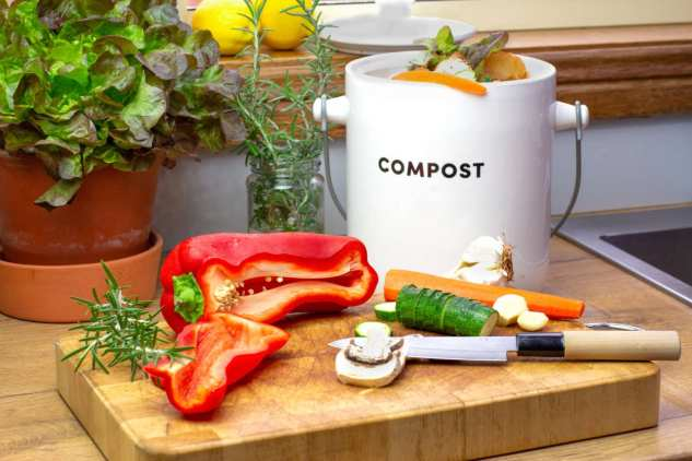Compost Bin & Vegetables