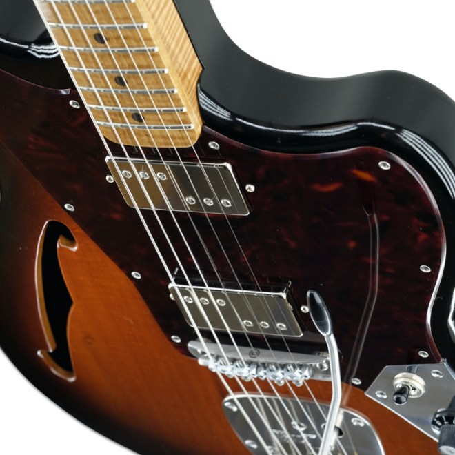 Body Detail, 2-Tone Burst Zaftig