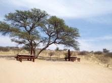 Kgalagadi Transfrontier Park