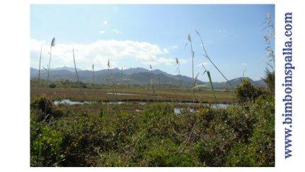 Laguna di San Teodoro Sardegna