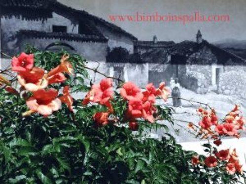 itinerario dei murales a Fonni
