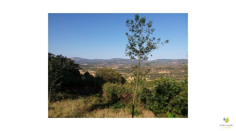 Itinerario Villanova Sardegna