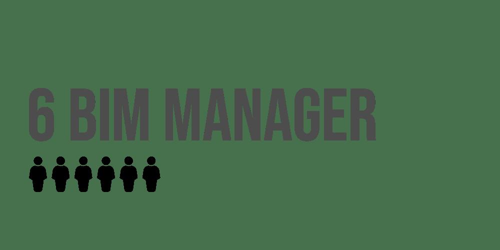BIM MANAGER1