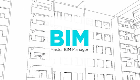 Job for BIM Manager in Dublin