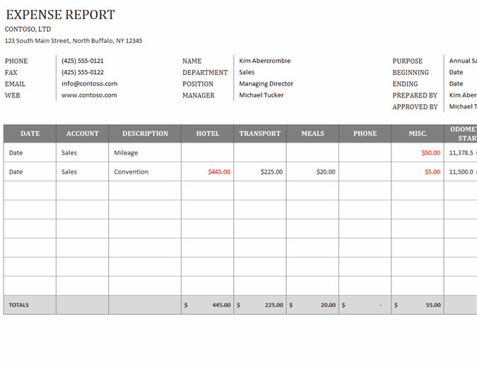 Begin with a blank spreadsheet Business Expense Report