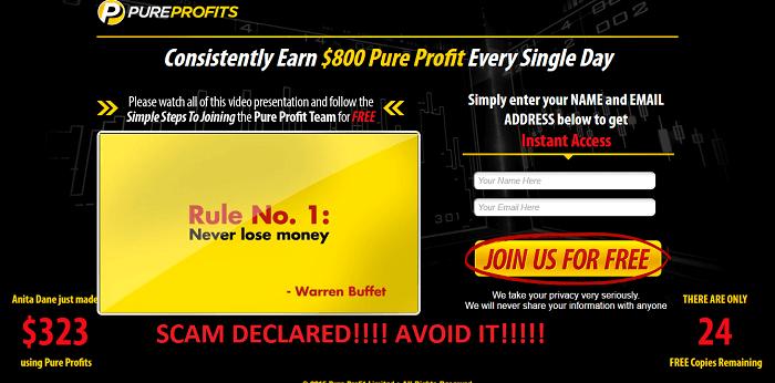 pure profit software review