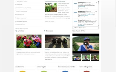 Página Web para SENASA