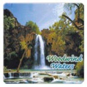 Cd aguas de viento y madera
