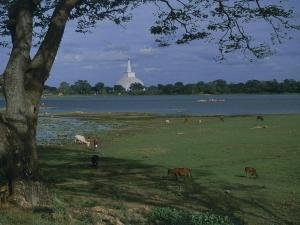 Sri Lanka's Historic Anuradhapura