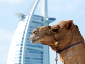 Dubai Middle East