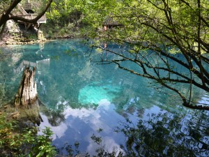 Royal Springs, Florida