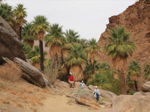 Palm Springs Region, California