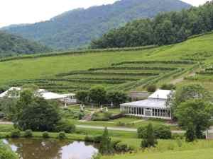Delfosse Vineyards and Tasting Room