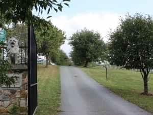 Otium Gate