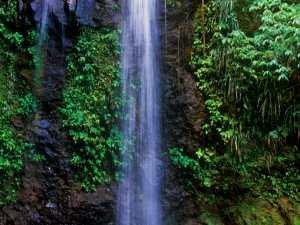 St Lucia Diamond Waterfall