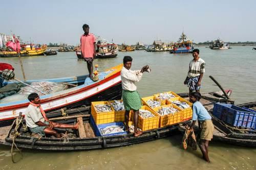 Fishing village, Odisha by the Sea