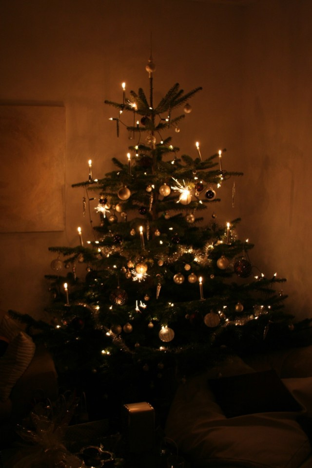 Christbaum2010