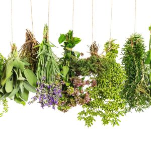 DRIED FLOWERS & HERBS
