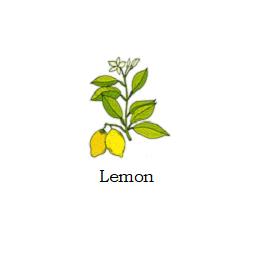 herb lemon
