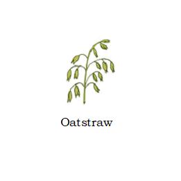 herb oatstraw