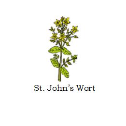 herb st johns