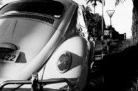 1970-beetle-1479265